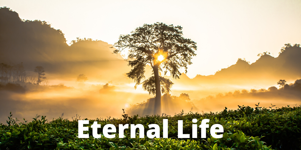 Eternal Life - Preachers Corner